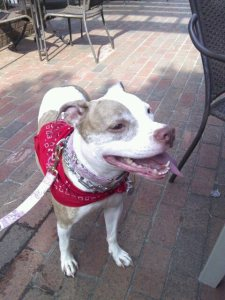 Suzy Downtown wearing her bandanna
